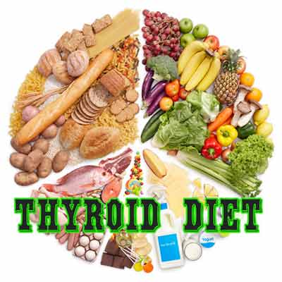The diets according to the thyroid like mild thyroid and hyperthyroid