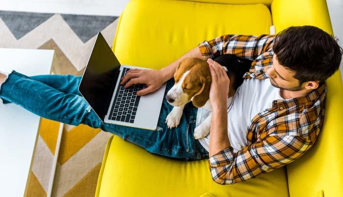 Ultrasonic Dog Device Easy to Use