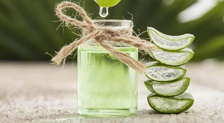 How Does Aloe Vera Help To Lose Weight