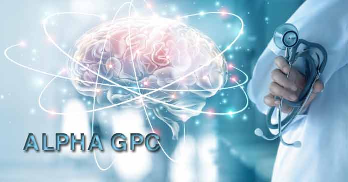 How Alpha GPC Works in the Brain