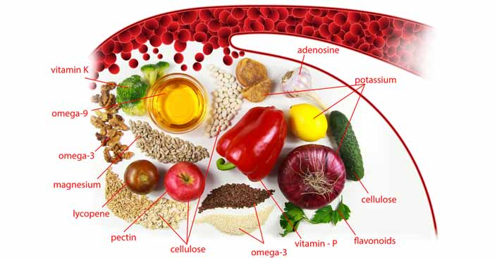 How can You Maintain Cholesterol Metabolism