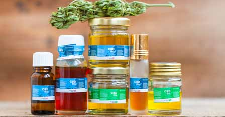 The Typical Shelf Life Span of CBD Oil