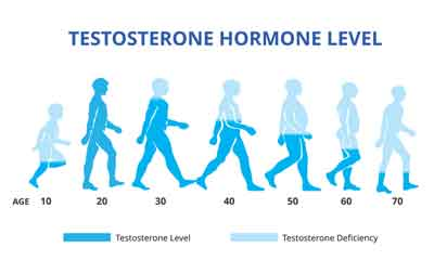 Best Habits That Naturally Increase Testosterone Levels