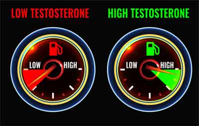 Habits That Naturally Boost Testosterone Levels