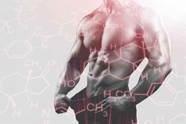 Increasing Testosterone Levels